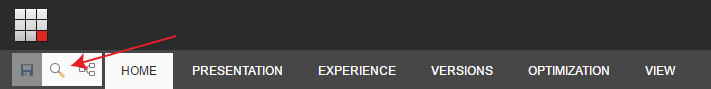 EXPERIENCE EDITOR SEARCH BUTTON